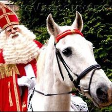 Sinterklaas en paard Amigo
